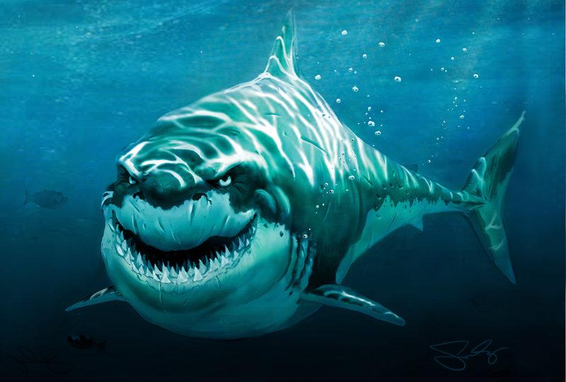 лос анджелес, акулы, пример